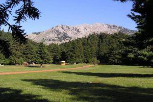 5o Μουσικό Φεστιβάλ Δάσους Αρβανίτσας | Πρόγραμμα εκδηλώσεων 2016!