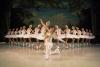 Η Λίμνη των Κύκνων στο Christmas Theater | Μπαλέτο στον Πάγο